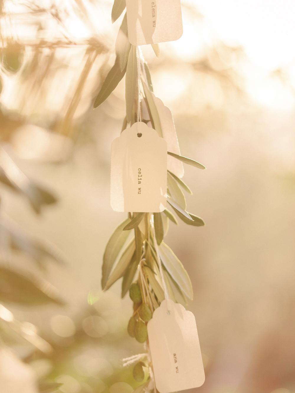 TUSCANY-INTIMATE-WEDDING--38
